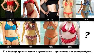 Pierdere în greutate stillorgan - bijuterieonline.ro