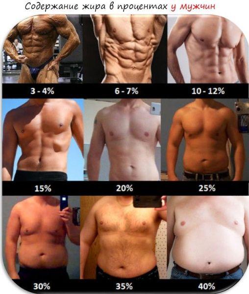 Pierde în greutate de grăsime corporală, Pierderea in greutate VS pierderea grasimii corporale