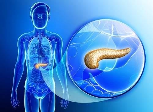 pancreatita cronică pierdere gravă în greutate)