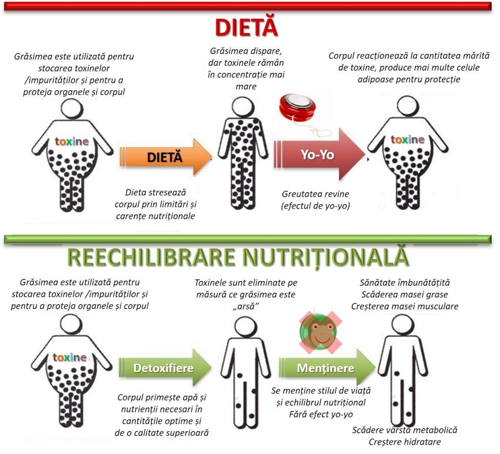 cum să pierdeți greutatea cu vitamixul dvs