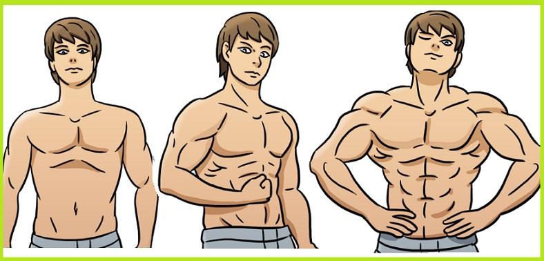 pierdeți grăsimea corporală, apoi vrac