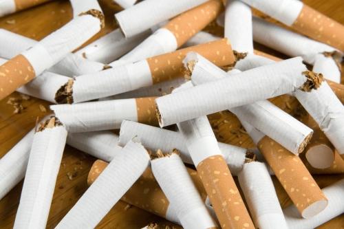 Tutun de mestecat (tutun fără fum)