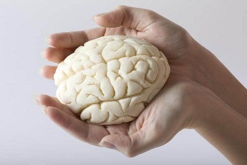 pierde greutatea cu creierul dvs