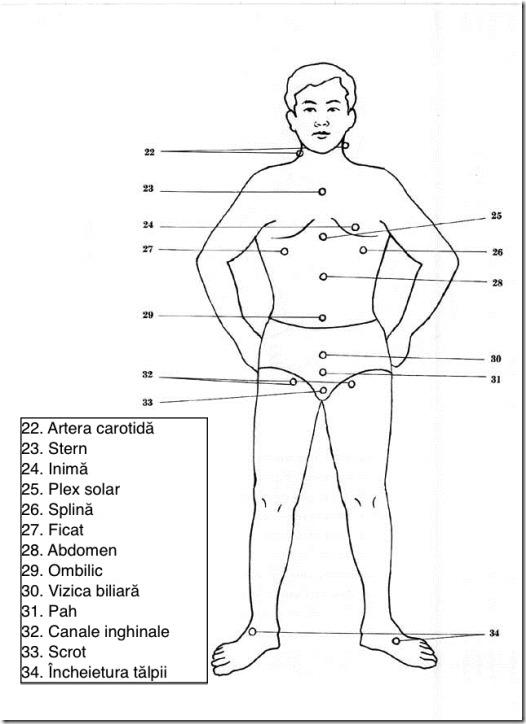 corpul meu slab web pierde in greutate