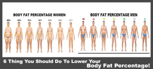 cum să pierzi grăsimea corporală pe torso fungsi suplumen fat burner