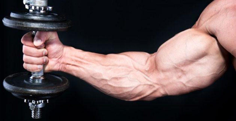 făcând greutăți pentru a pierde grăsime pierderea în greutate a zgârieturii