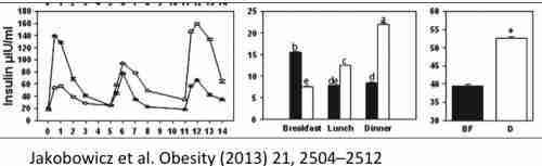 ritmul circadian și pierderea în greutate