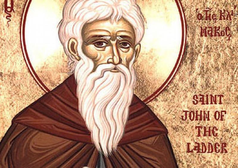 Librăria Sf. Iosif | Sfântul Louis Martin
