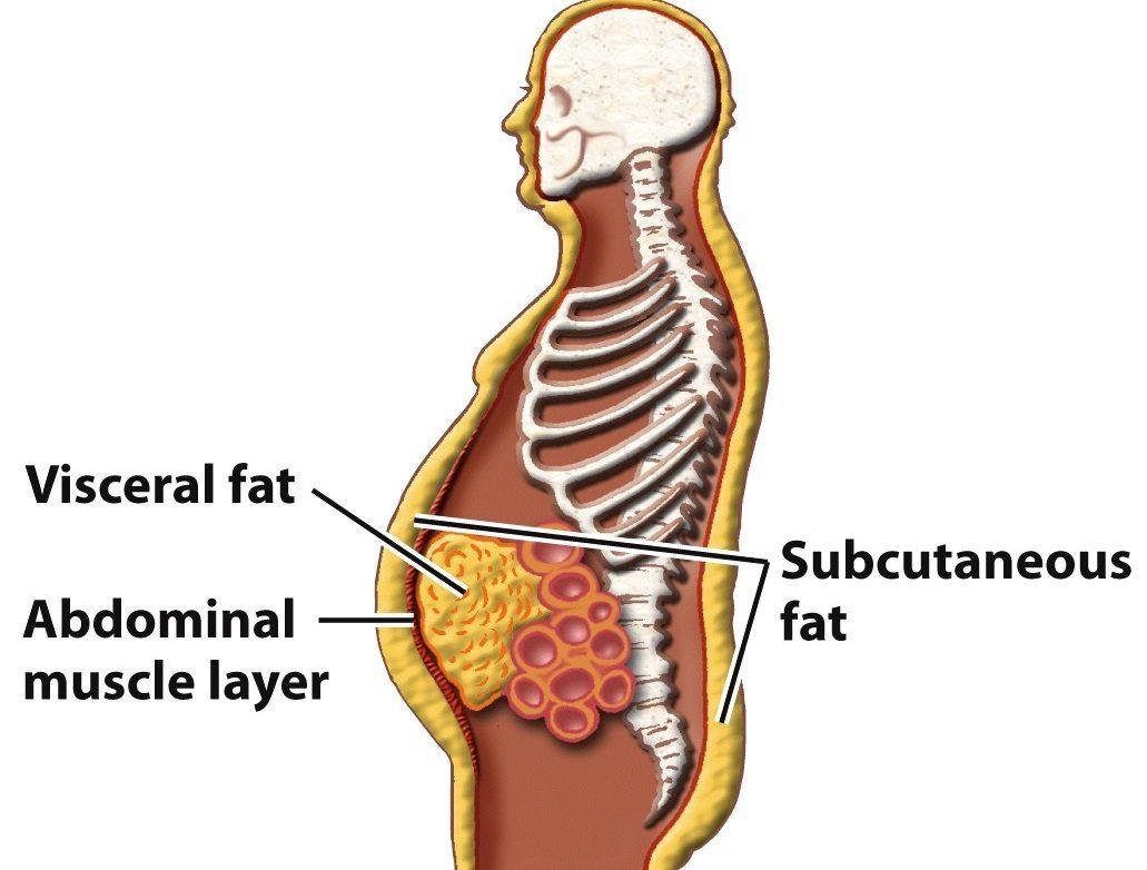 cum să ardeți grăsime de la abdomen)