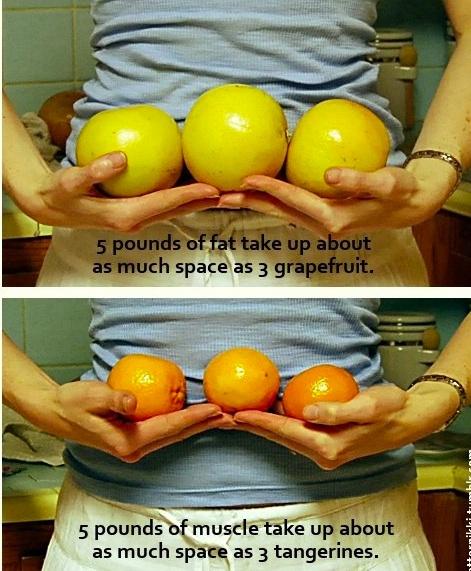 vidya vox pierdere în greutate