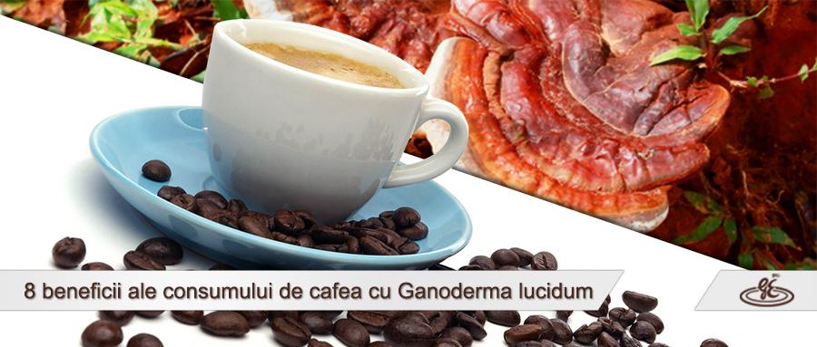 cafeaua ganoderma ajută la scăderea în greutate
